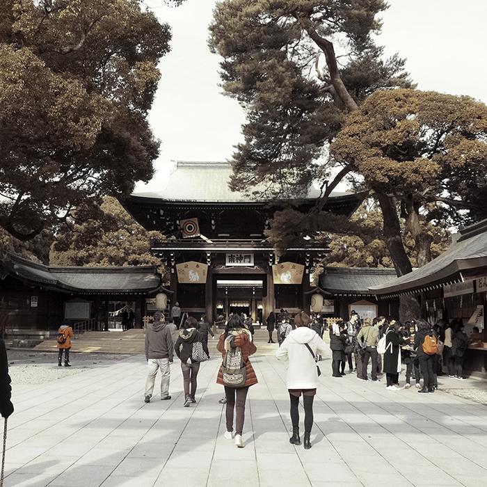 Tokyo Meiji Shrine_ft