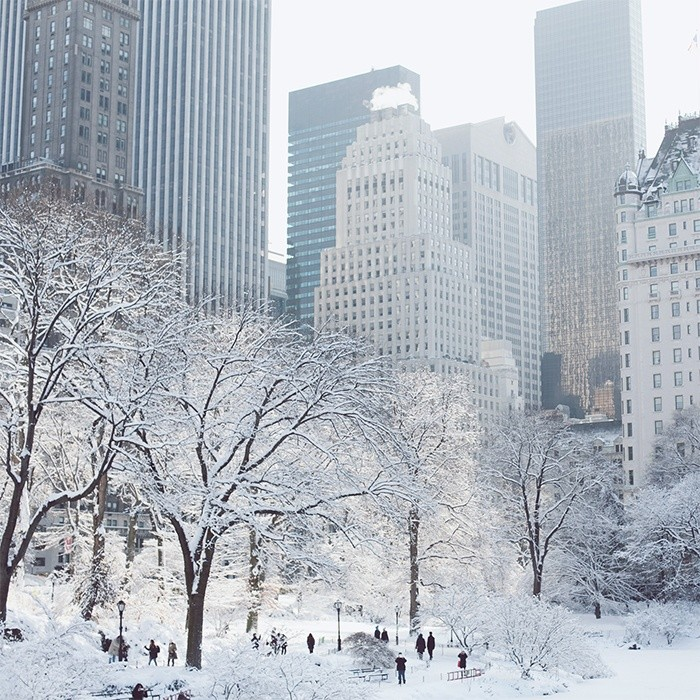 new york winter snow